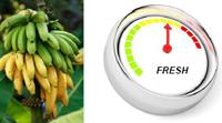 свежесть овощей и фруктов